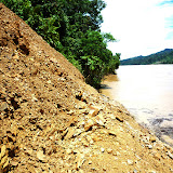 写真3 斜面崩壊の様子 砂や泥の上に基盤岩が崩れてできた礫が転がっているため足もとが不安定である。/ Photo3 the state of slope failure: the gravels of bedrock piled up and make this spot quite unstable