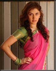 actress manjari in hot saree still