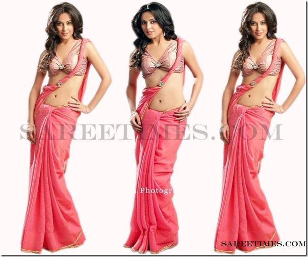 Disha_Pandey_Designer_Saree