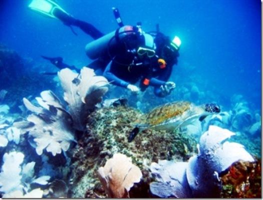 Batismo de mergulho Arraial do Cabo