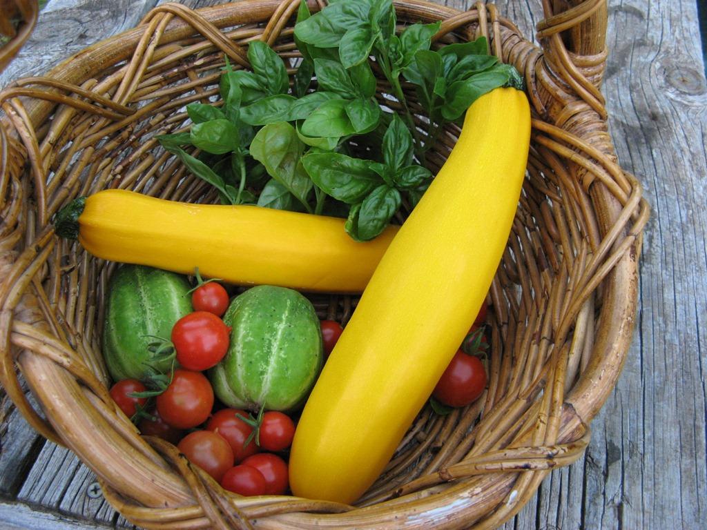 [Yellow-Zucchini-64.jpg]