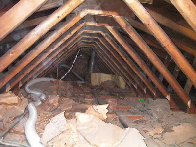the blower hose in my attic