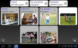 Rosetta Stone screen capture