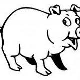 porco p1_3.jpg