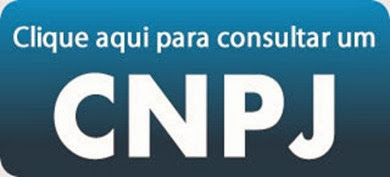 como consultar cnpj