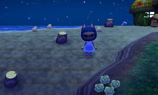 animal crossing new leaf beetle catch guide 01
