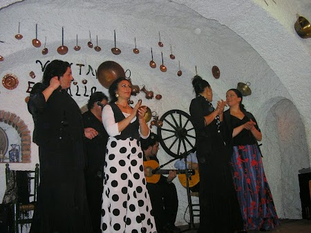 04. Flamenco andaluz.JPG