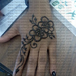 Hennadone at Salisbury University By Hennadesigner 3-11-2011 10-39-22 AM.jpg