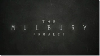 mulbury project