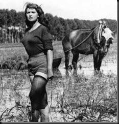Silvana Mangano_Riso amaro 1949