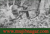 Bangladesh_Liberation_War_in_1971+24.jpg