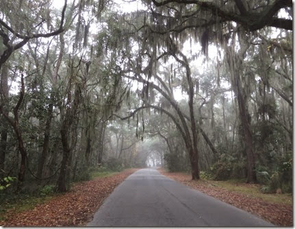 ga_eoy_jekyll_road