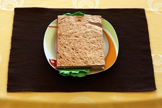 Livros sanduíches (4)