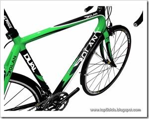 Dolan Dual Road Bike (2)