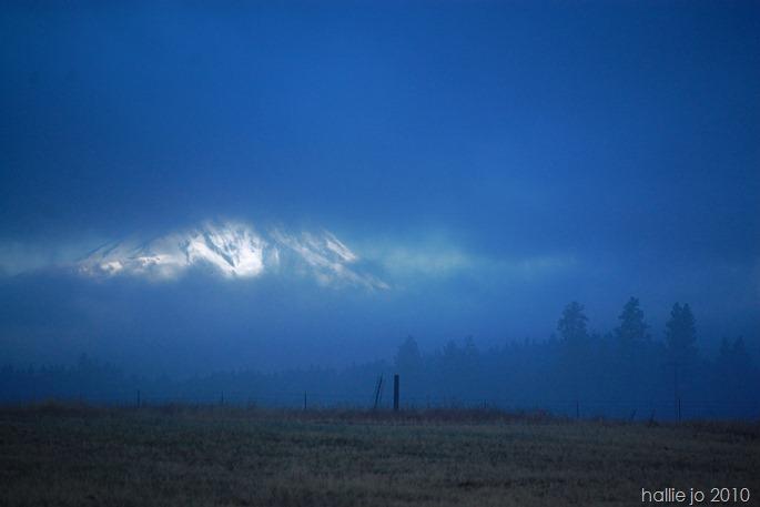 Morning Mist 005