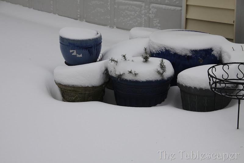 Snow! 294