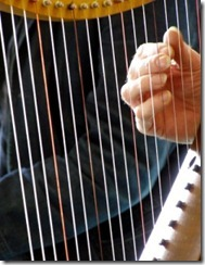 harp_strings