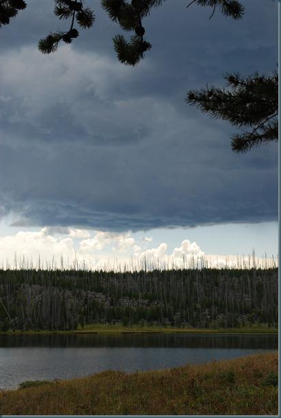 Yellowstone 033