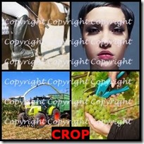CROP- 4 Pics 1 Word Answers 3 Letters