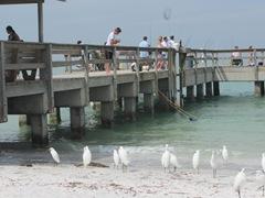 Florida Sanibel pier