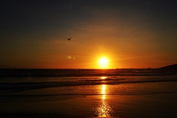 Nascer Pr do Sol Andorinha