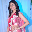 Esha Deol\'s Wedding Reception 2.jpg