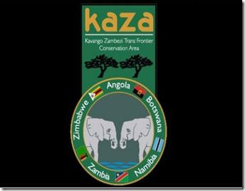 Fórum Económico da província do Kuando Kubango
