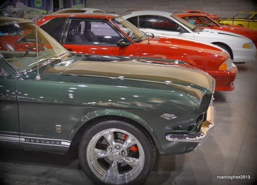 Mustangs for Christmas?
