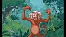 13 le singe