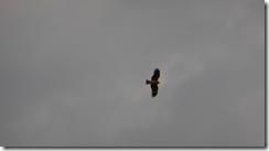 螢幕截圖 2014-09-01 22.48.09