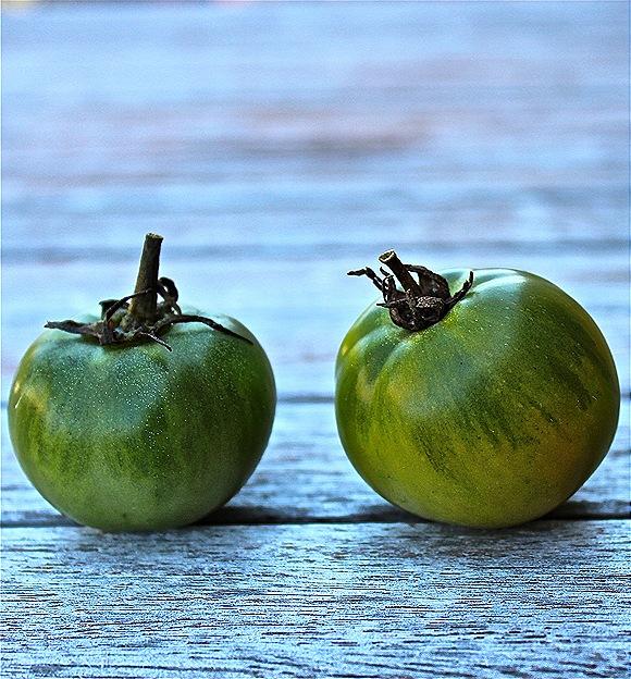 Green tomato still life