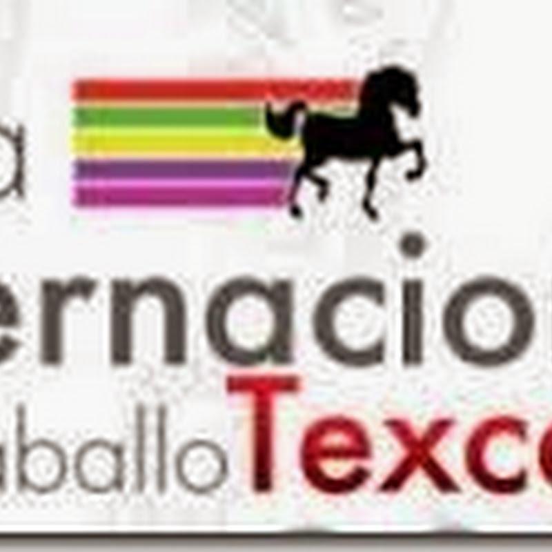 Palenque Feria de Texcoco 2015