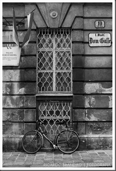 vienna bikes03-48