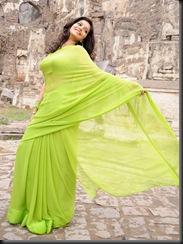 swathi in green  saree