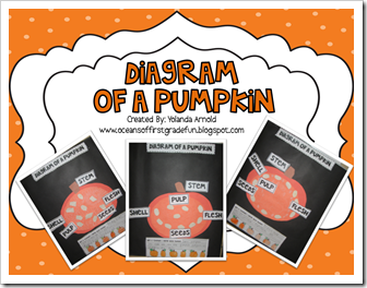 Diagram of a Pumpkin-TpT