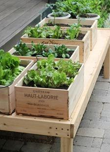 gardeningbox