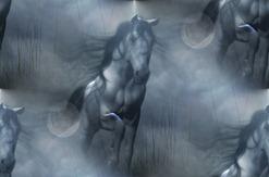 fantasy-horse