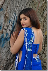 poonam bajwa in bllue saree