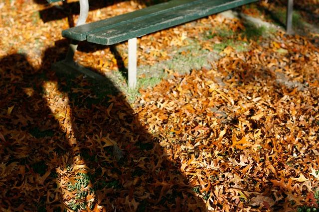 Fall-Oct12-0002