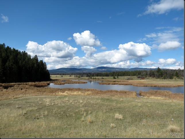 The marsh behind