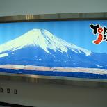 mount fuji promo in Chiba, Tokyo, Japan