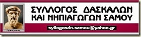 logo syllogoy 15