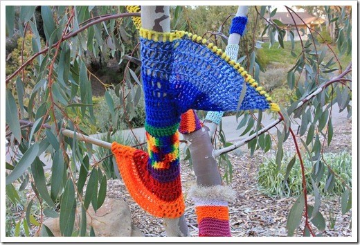 130119_UCDA_AustralianCollection_Natural-Transformations-yarn-bombing_28
