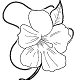 hibiscus-flower-coloring-page.jpg