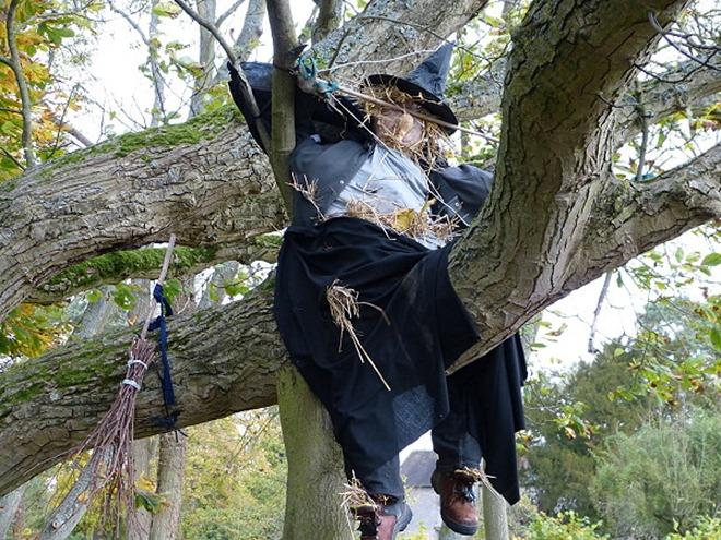 Чучело на дереве