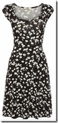 Oasis Mono Floral Tea Dress
