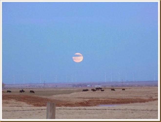Moon January 2014 (13)