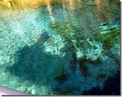 Rainbow River headsprings