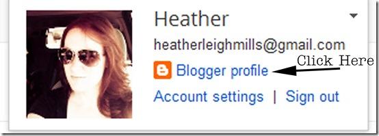 Blogger Profile 2