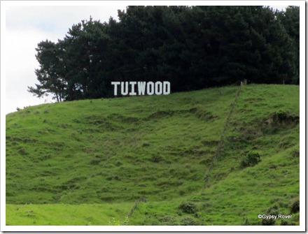 Tuiwood, Mangatainoka aka Tui Breweries.